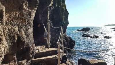 Gobbins Sea Safari