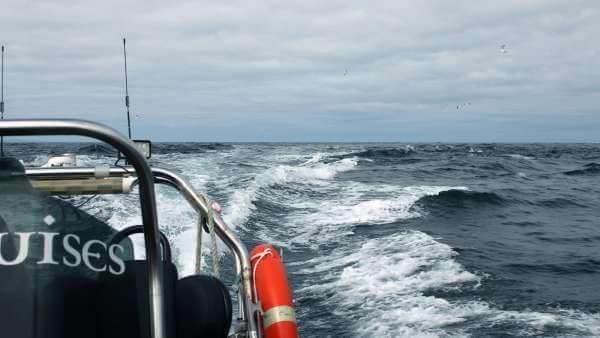 Outer Hebrides Sea Trip