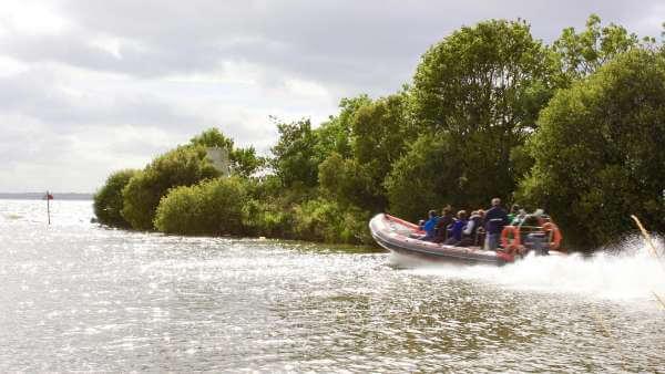 Toome to Portna River Trip with Abhainn Cruises