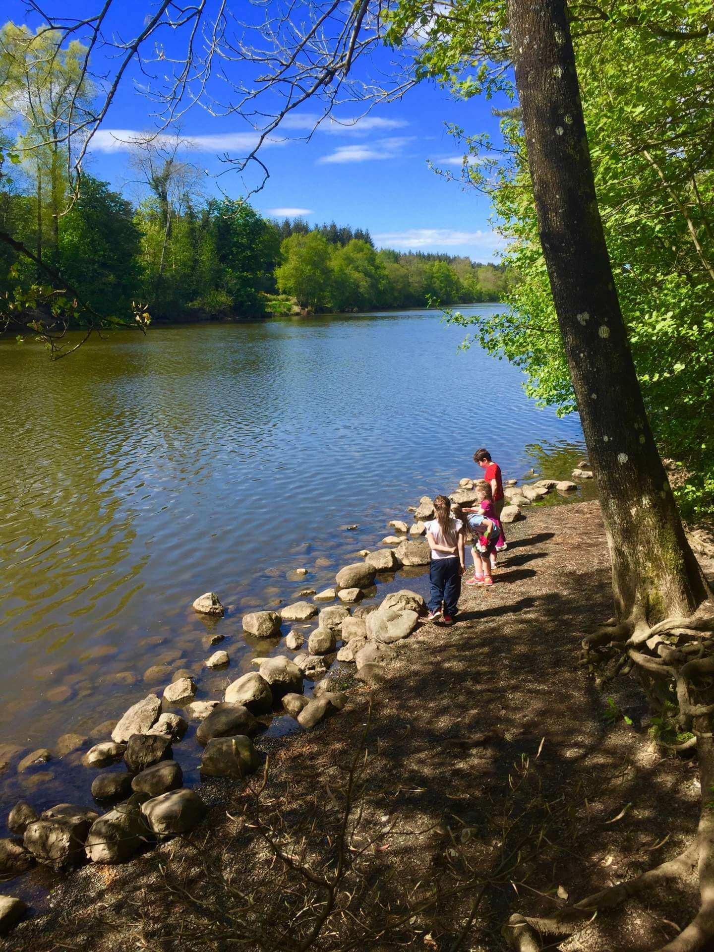Portglenone Forest River Bann